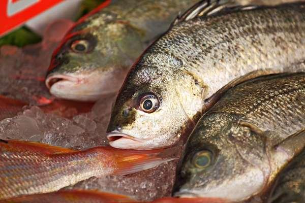 Praca Na Produkcji Przetwórstwa Ryb W Kołobrzegu